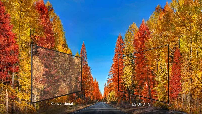 زاویه دید گسترده تلوزیوین 65 اینچ 65UK6300