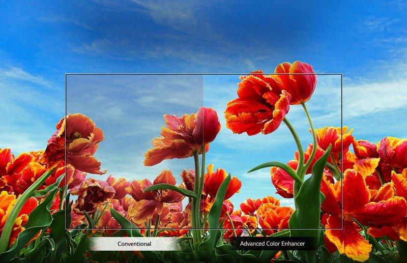 کیفیت Full HD تلویزیون ال جی مدل 43LM5500